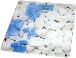 BBK BCS3002G (White/Blue)