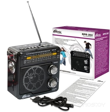 Радиоприемник Ritmix RPR-202 (Black)