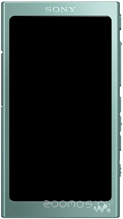 MP3-плеер Sony NW-A45 (Green)