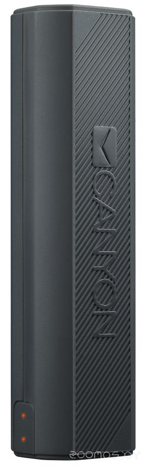 Портативное зарядное устройство Canyon CNE-CPBF26DG