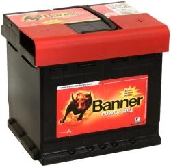 Banner Power Bull P5003
