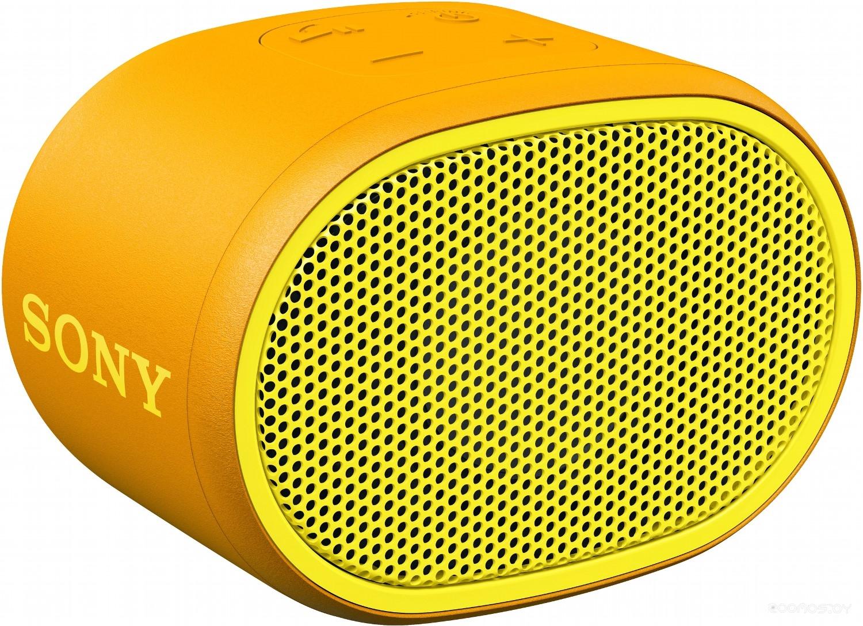 Портативная акустика Sony SRS-XB01Y