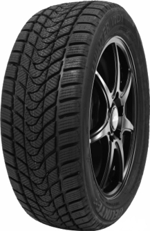 Delinte Winter WD1 275/40R19 101H