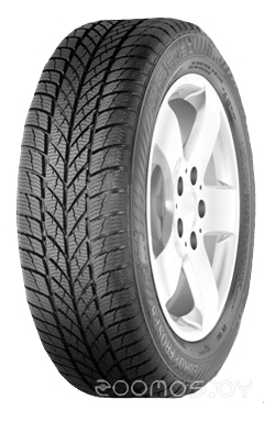 EURO*FROST 5 195/65 R15 91T