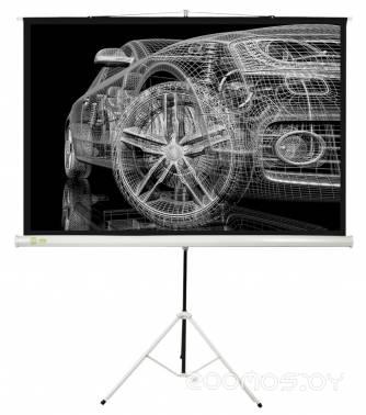 Проекционный экран Cactus Triscreen CS-PST-124x221